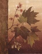 Maple Leaves - mini