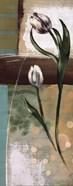 Floral Splendor III