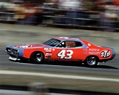 Richard Petty #147