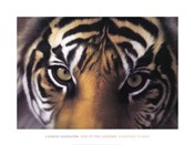 Eyes of the Goddess: Sumatran Tigress