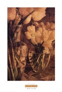 Antique Tulips I