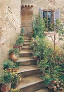 Stairway in Provence
