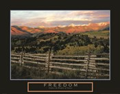 Freedom - Explore the Wonders of Nature