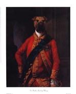 Sir Walter Bark