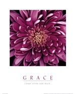 Grace - Purple Mum