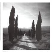 Mensano, Tuscany