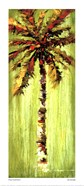 Coastal Palm VI