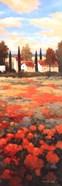 Tejados Rojos II