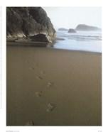 Ocean Footprints
