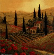 Poppies Of Toscano II