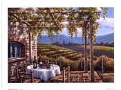 Vineyard Terrace
