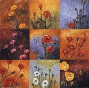 Poppy Fields I