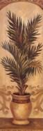 Tuscan Palm I
