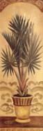 Tuscan Palm II