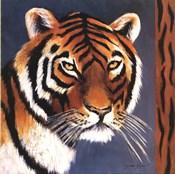 Exotic Tiger - Mini