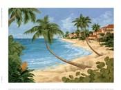 Palm Beach Garden II