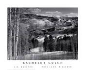Bachelor Gulch