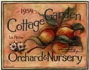 Cottage Garden IV