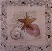 Pastel Shell III