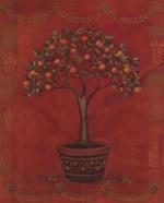 Topiary Fresco Orange
