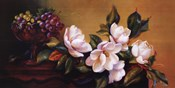 Magnolia With Grapes