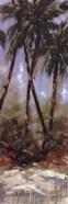 Contempo Palm II