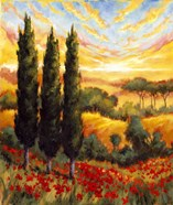 Tuscany In Bloom IV