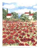 Poppy Field #1