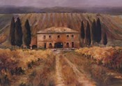 Toscana Vigna