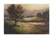 Foothills Of Appalachia I