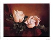 Magnolia Vignette ll