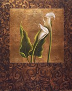 Calla Lily With Arabesque II