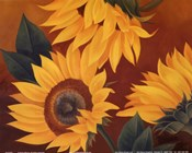 Sunflowers II