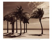 Key Biscayne I