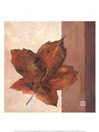 Leaf Impression - Rust