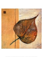 Leaf Impression - Ochre
