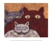 Sun Cats