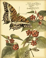 Mini Whimsical Butterflies II