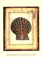Small Rustic Shell II