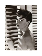 Audrey Hepburn – Blinds