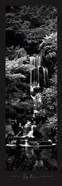 George Lambros - Garden Falls Size 12x36