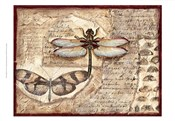 Poetic Dragonfly I