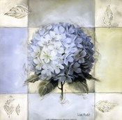 Blue Hydrangea II