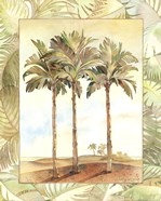 Palm Tree IV