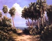 Untouched Coast