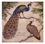 Peafowls