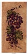Vintage Grapevine ll