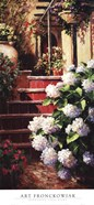 Hydrangea Steps Right