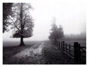 Misty I