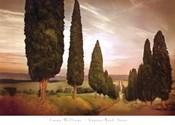 Cypress Road, Siena
